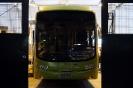 Sessão Fotográfica/Fundão - Ônibus H2_123