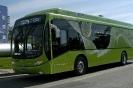 Sessão Fotográfica/Fundão - Ônibus H2_35